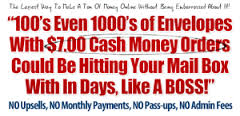 You get paid fast - incredibly fast!